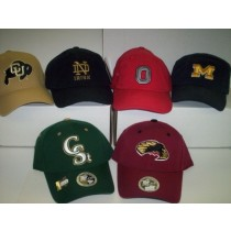 College Logo Caps