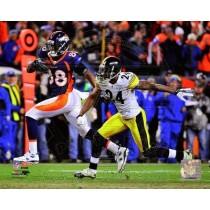 THOMAS, Demaryius (2012 Playoff Catch)